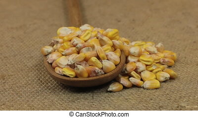 Rotating a spoon, overflowing with corn grains, lying on...