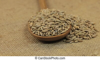 Rotating a spoon, overflowing with rye grains, lying on...