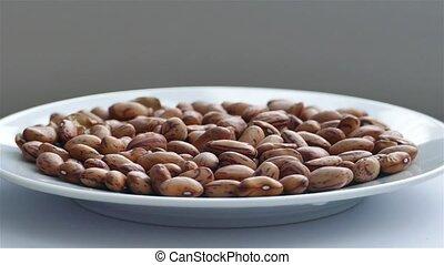 Rotating Cranberry/Roman Beans