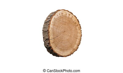 Rotating cross section of tree stump, isolated on white background.