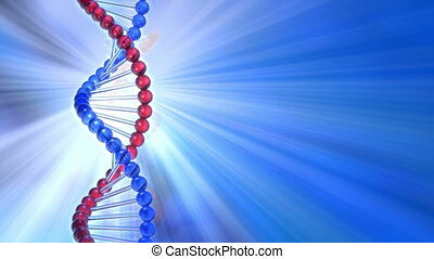 Rotating DNA molecule