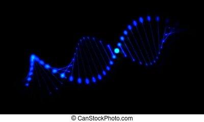 Rotating DNA spiral