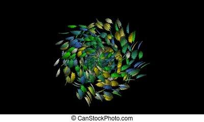 Rotating feathers fancy, seamless loop, def
