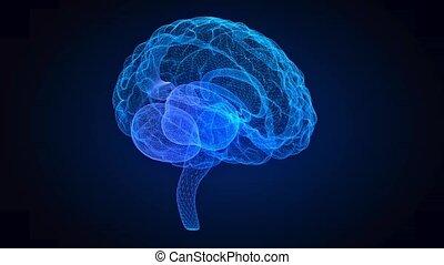 Rotating human brain. Glowing blue human brain 3d model. Seamless looping motion animated neurons in virtual space.