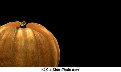 rotating pumpkin on black background with alpha channel . 3d 4K