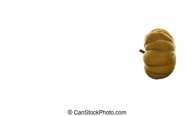 rotating pumpkin on white background with alpha channel . 3d...