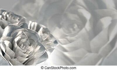 rotating white roses, wedding theme - 3D render. seamless loop