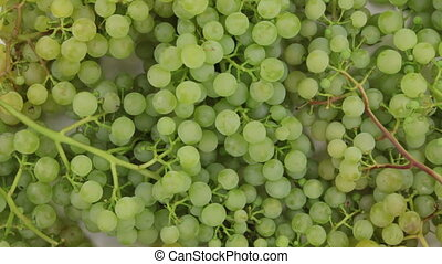 Rotation a heap of bunch green grapes.