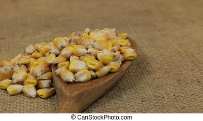 Rotation, heaps of corn grains, falling from a wooden spoon on burlap.