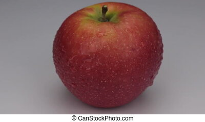 Rotation of a red apple in drops of dew on a white background.