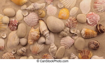 Rotation of seashells and white stones in sand.