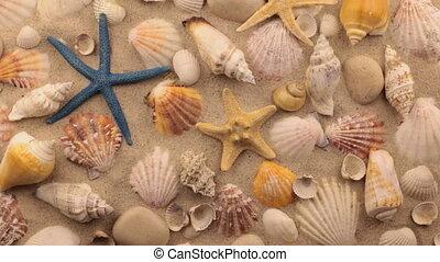 Rotation of seashells, starfish and white stones on sand.
