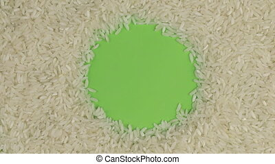 Rotation of the rice grains lying on a green screen, chroma key.