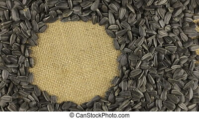 Rotation of the sunflower seeds lying on sackcloth with space for your text