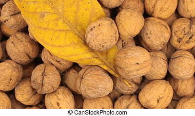 Rotation of walnuts in shell and leaf. Food and health. View...