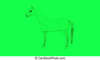 rotation of wire frame isolated horse on green screen -...
