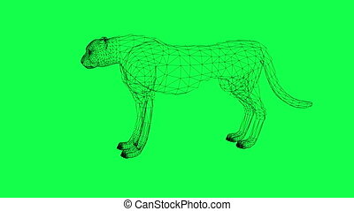 rotation of wire frame isolated Leopard made in 3d software