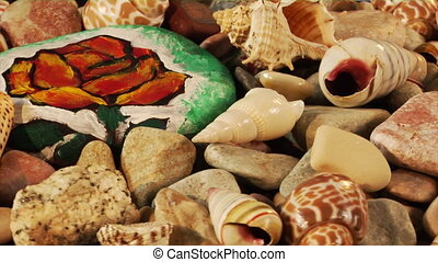 rotatory sea-shells loop