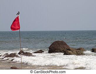 rote markierung, mit, der, vogel, sitzen, auf, it., goa, indien, sandstrand