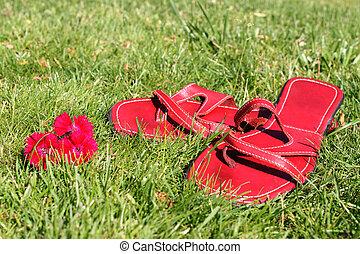 rote schuhe, auf, gras