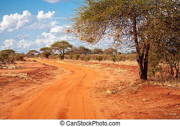 rote straße, in, der, savanne, von, kenia, mit, a, großer baum, baobab, mit, a, blauer himmel, und, wolkenhimmel