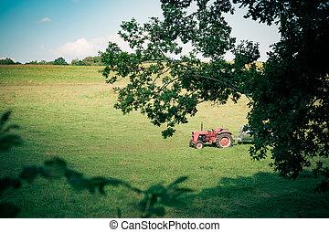roter traktor, auf, a, feld
