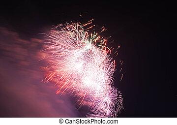 rotes , und, lila, feuerwerk, in, himmelsgewölbe