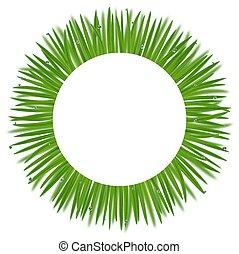 rotondo, erba, cornice, bokeh, effetto