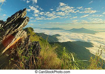 rots, berg, mist, op