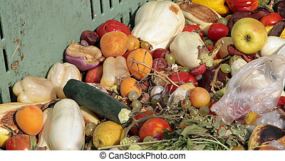 damaged fruits and vegetables to use as fertilizer in farm