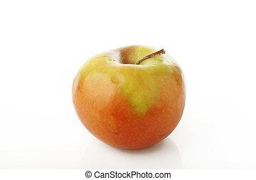Rotten apple on white background