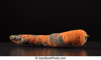 Rotten carrot on a black background