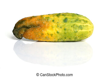 Rotten cucumber isolated on the white background
