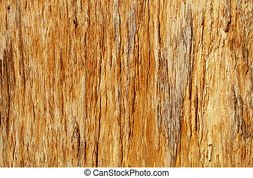 Rotten hardwood background