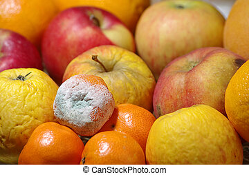 Rotten mandarin and other fruits