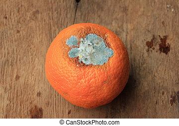 rotten orange fruit on wood vintage
