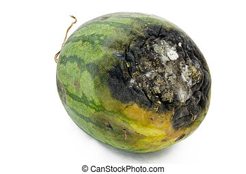 Rotten watermelon. - Rotten watermelon isolated on a white...
