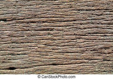 Rotten wood texture background