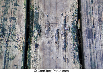 The rotten wood in the garden. This could be use in many kinds of presentation or achitecture.