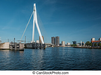 Rotterdam city cityscape with Erasmus bridge, South Holland,...