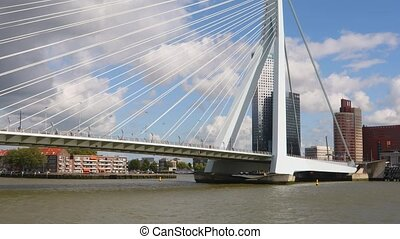Rotterdam sightseeing boat tour - Rotterdam view from boat...
