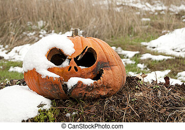 Rotting Pumpkin in the Snow