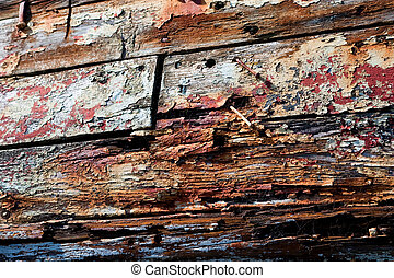 Rotting Wod - Rotting Wood Texture
