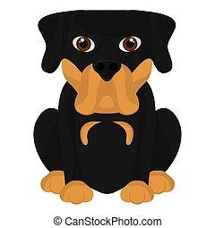 rottweiler, cartone animato, carino, isolato