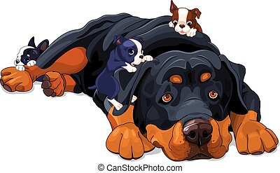 Rottweiler Family - Illustration of beautiful Rottweiler...