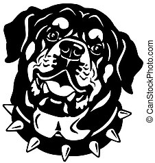 rottweiler head black white