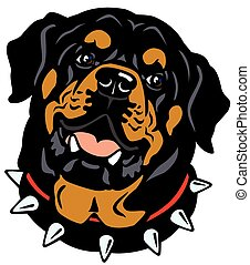 dog head, rottweiler breed, illustration isolated on white background