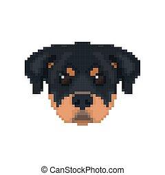 Rottweiler head in pixel art style.