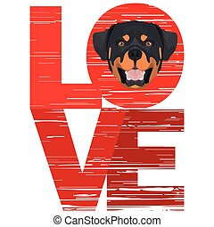rottweiler, szeret