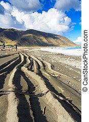 roue, 4wd, conduire, quatre, sable, route côtière